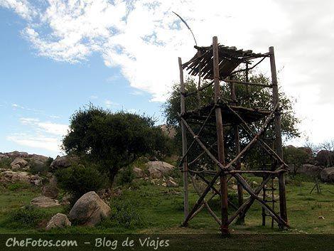 Mangrullo en Posta de los Nogales