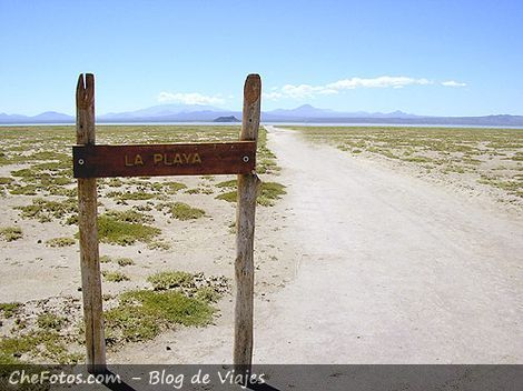 La playa de la laguna de Llancanelo