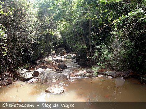 Ríos y Cachoeira, Siriú - Garopaba