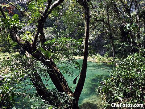 Selva del Quetzal