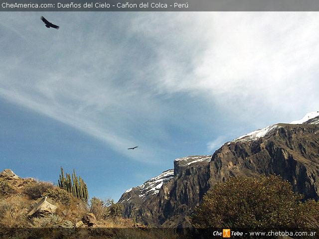 Desde Arequipa al valle y cañón del Colca 3
