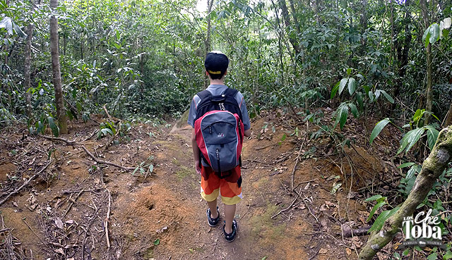 consejos-caminar-trilha