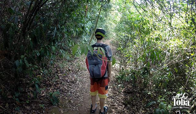 trekking-ilha-grande