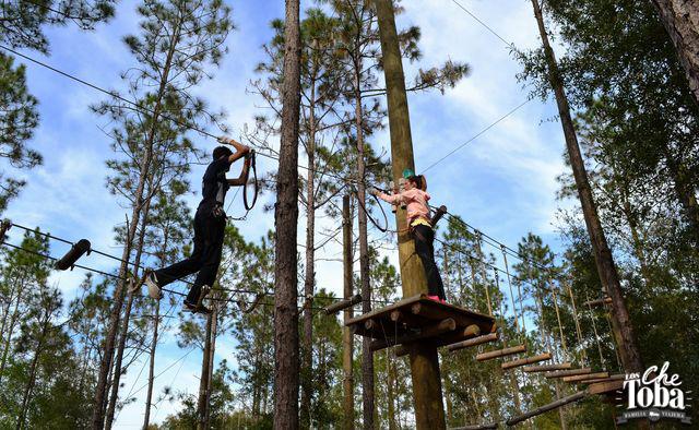 arborismo-en-Orlando