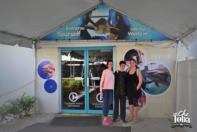 clearwater-aquarium
