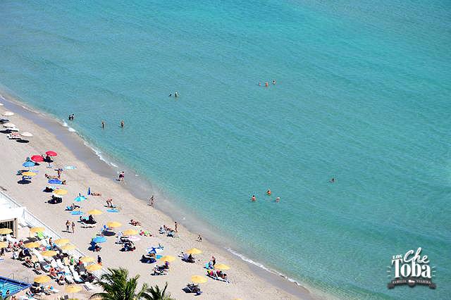 mar-hollywood-beach