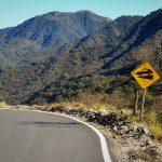 Camino Cuesta de Los Angeles, Turismo en Catamarca – Parte III