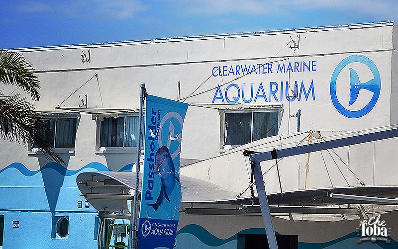 opiniones-clearwater-marine-aquarium