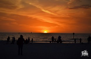 La Costa Oeste de la Florida - Playa de Clearwater 20