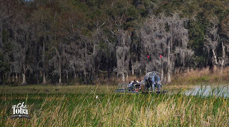 paseo airboat florida