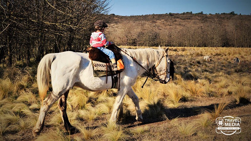 alquiler-caballos-santa-rosa-calamuchita