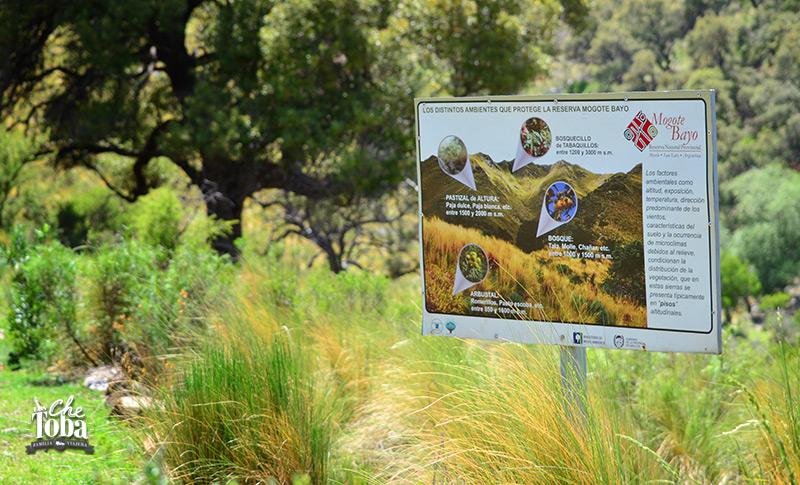 Rutas y senderos de trekking en Merlo: Cerro Mogote Bayo
