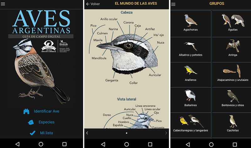 Guía de Aves para el celular de #AvesArgentinas 2
