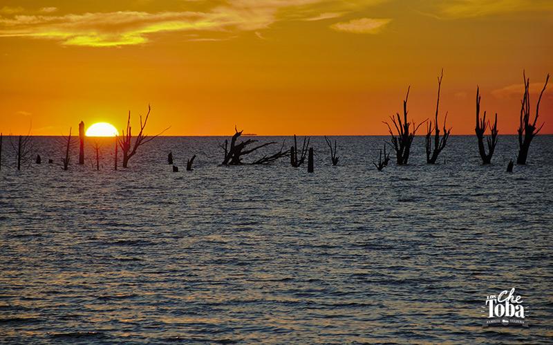 Qué ver (y hacer) en la Laguna de Mar Chiquita, Córdoba 29