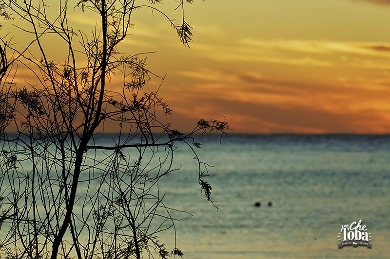 Qué ver (y hacer) en la Laguna de Mar Chiquita, Córdoba 30