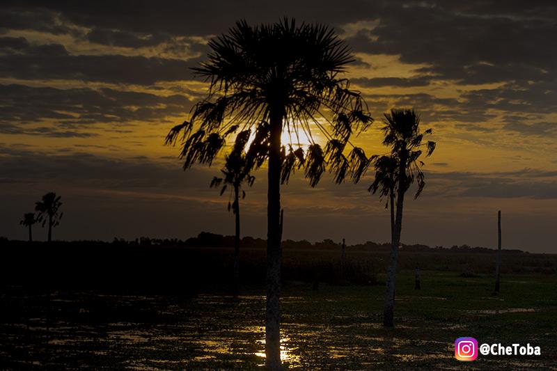 Fotografías de los Esteros del Iberá