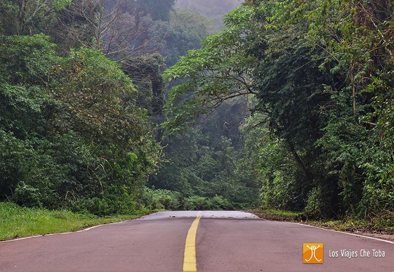 Excursión a Los Saltos del Moconá, Misiones