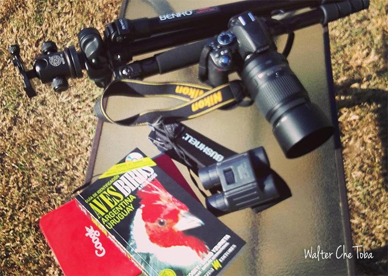 Safaris fotográficos y observación de aves 1