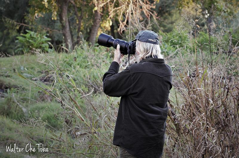 Safaris fotográficos y observación de aves 6