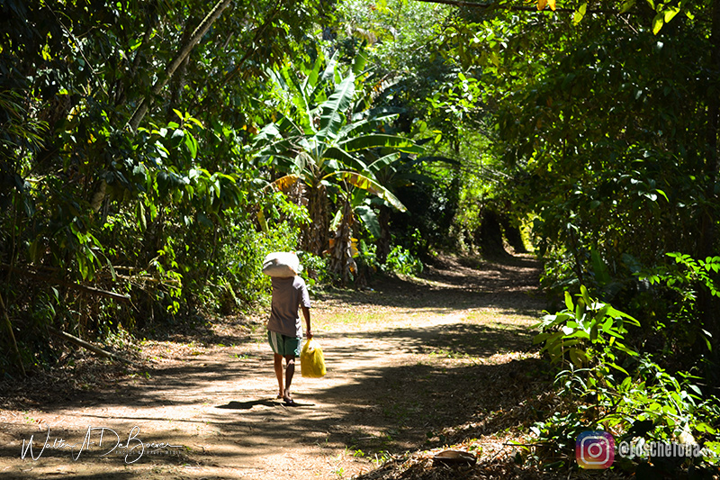 Camino alternativo a Lopes Mendes