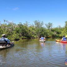 Excursiones en kayaks por la zona de Cocoa Beach 30
