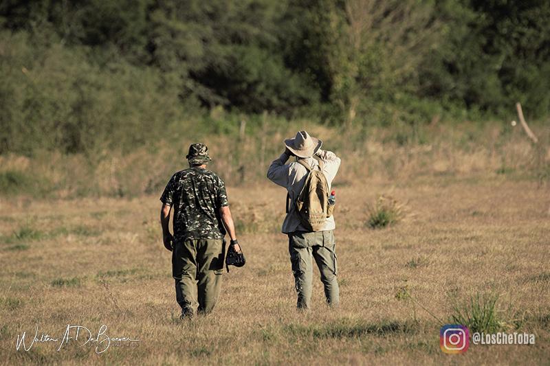 Safari fotográfico Che Toba