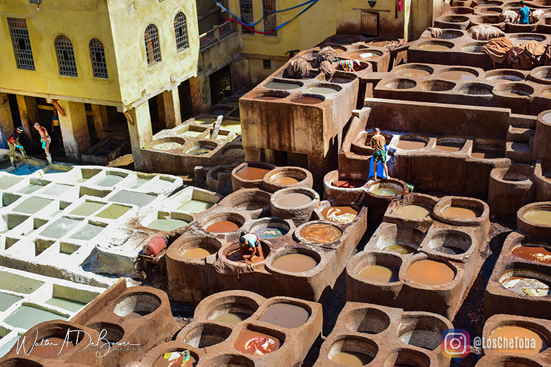 Medina de Fez curtiembres