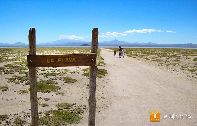 Reserva Natural Llancanelo