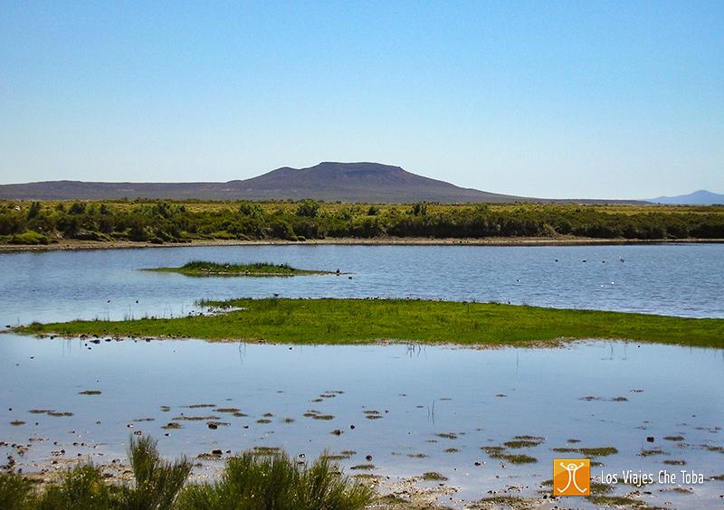 laguna Cari Lauquen