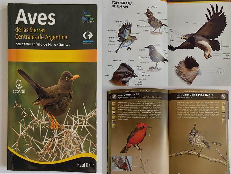 aves de las sierras centrales de la Argentina