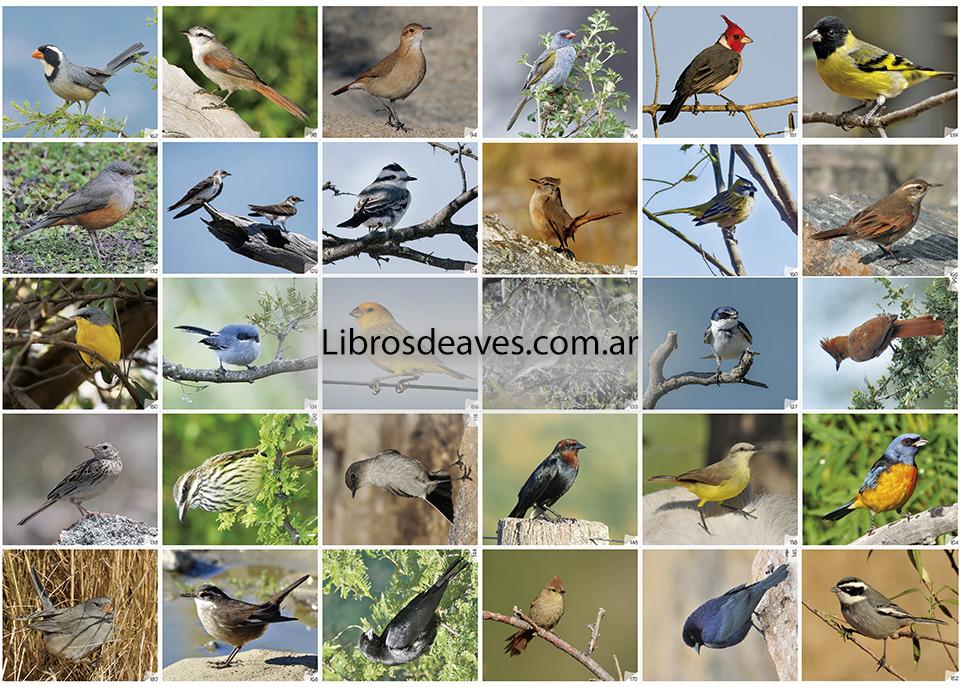 Mi libro de Figuritas de Aves de la Argentina