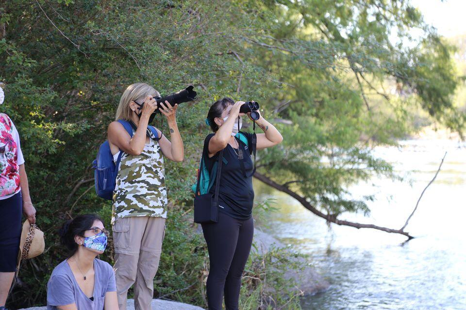 Avistaje y fotografía de aves