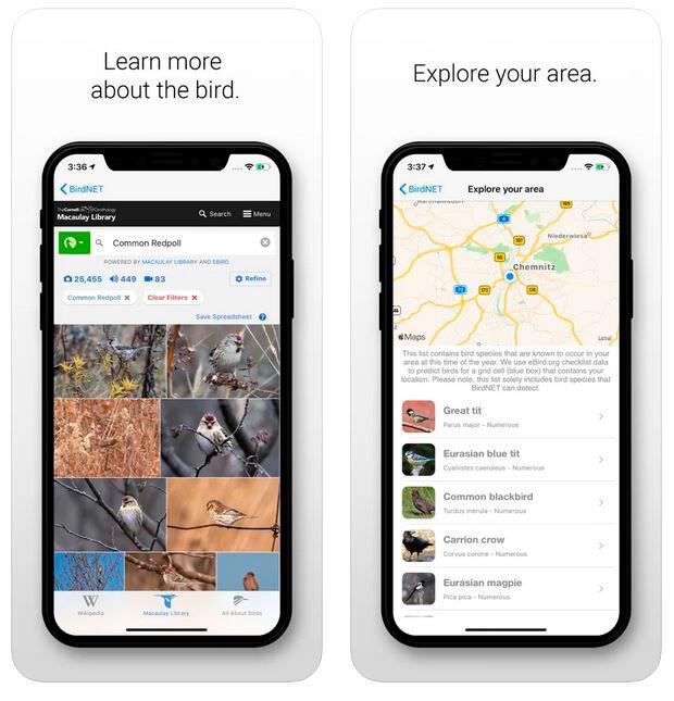 App para explorar aves en una determinada zona