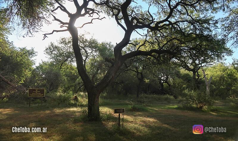 Reserva natural de Bell Ville