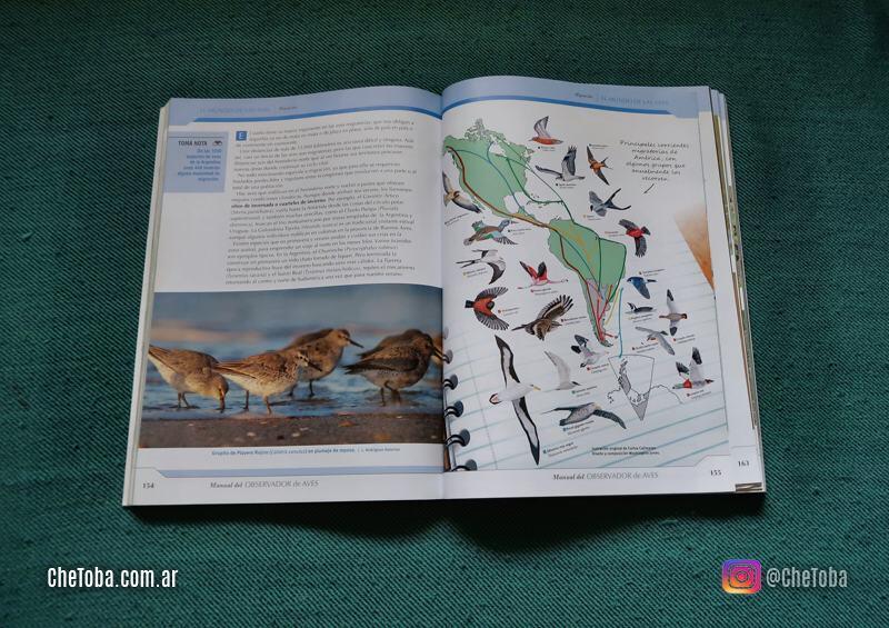 Rutas Migratorias de las Aves de Argentina