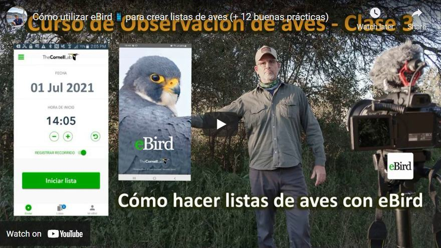 Cómo utilizar eBird App (Video Tutorial + 12 Tips)