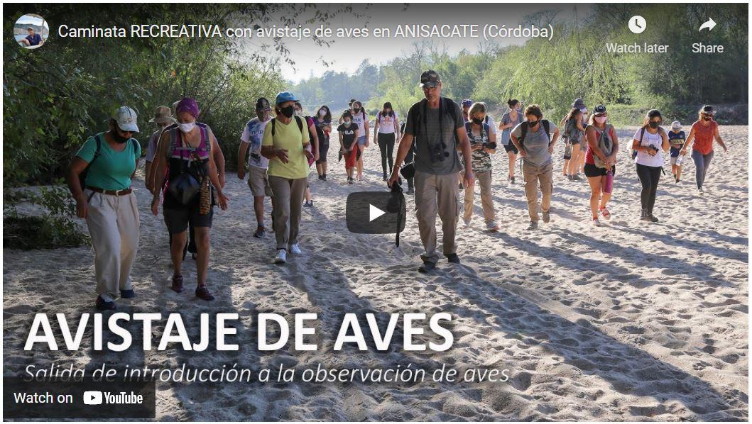 Observación de Aves Anisacate, Córdoba