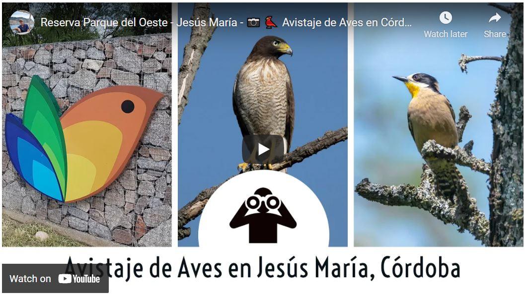 Observación de Aves cerca de Córdoba Capital