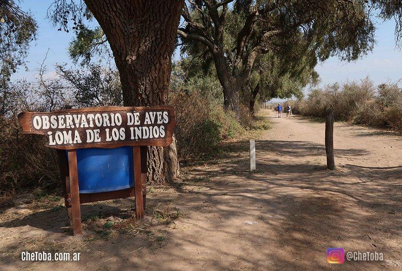 Loma de los Indios, mirador de aves, Mar Chiquita, Córdoba