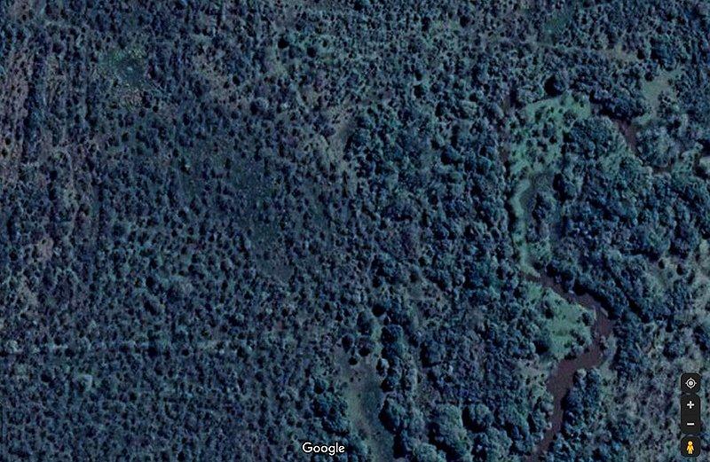 Parque Nacional Selva de Montiel, Entre Rios