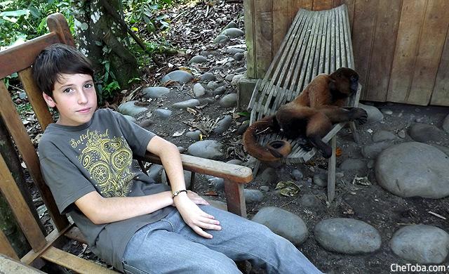 Toto y el Mono
