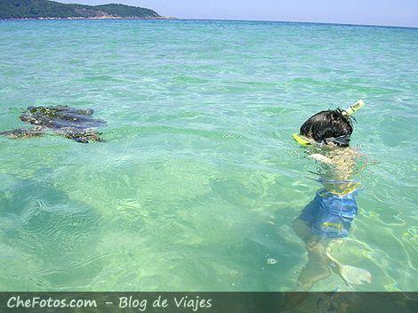 Playa de Lopes Mendes, Ilha Grande 2