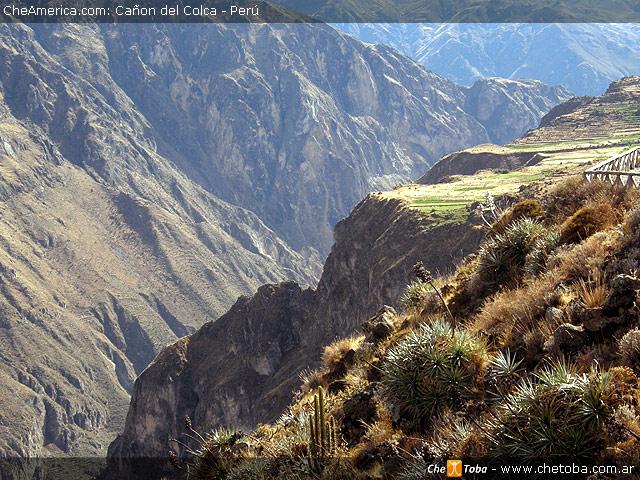 Mirador del Condor - Cañon del Colca