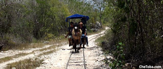 truck-caballo-cenote