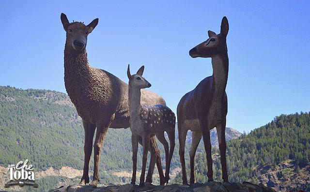 ciervos-san-martin-andes