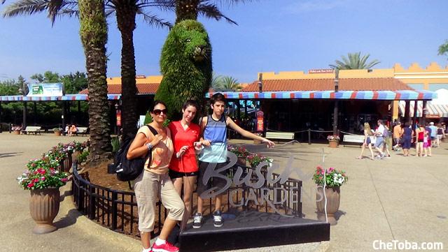 Entrada Busch Gardens Tampa