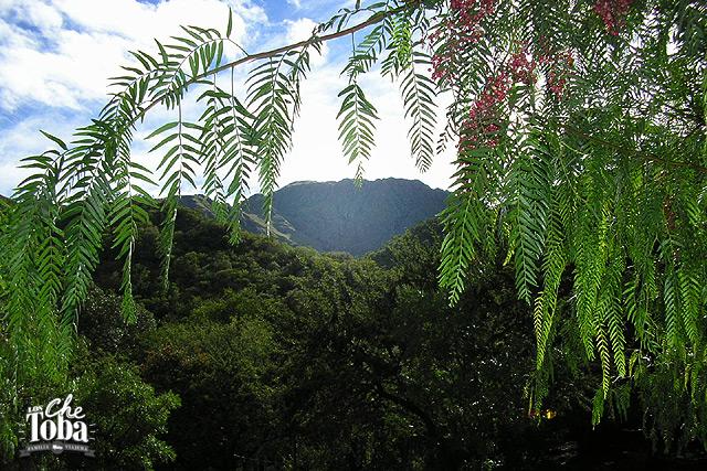 Foto del cerro Uritorco