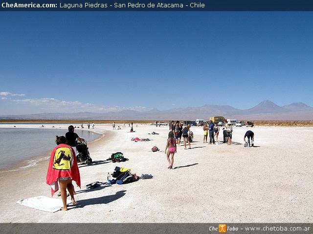 Excursión Laguna de Cejar - San Pedro de Atacama 7
