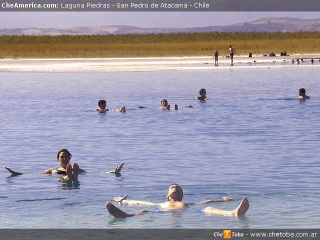 Excursión Laguna de Cejar - San Pedro de Atacama 6