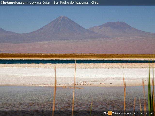 Excursión Laguna de Cejar - San Pedro de Atacama 3